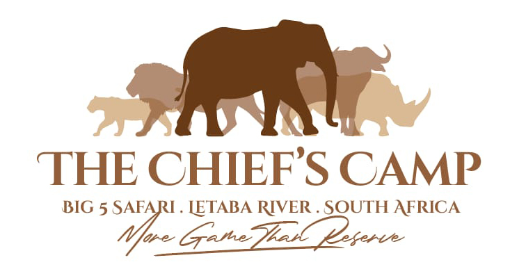 The Chief's Camp